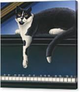 Fur Neil - Cat On Piano Canvas Print
