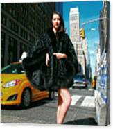 Fur-st Avenue Canvas Print