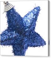 Furry Christmas Star Canvas Print