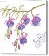 Fuschia Flowers Canvas Print