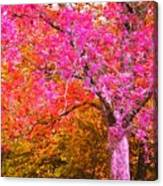 Fuschia Tree Canvas Print