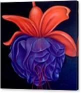 Fussia Canvas Print