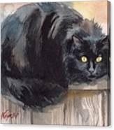 Fuzzy Black Cat Canvas Print