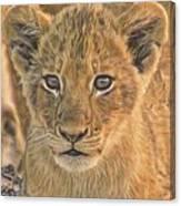 Fuzzy Cubby Canvas Print