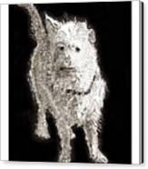 Fuzzy Molly Canvas Print
