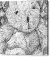 Fuzzy Wuzzy Bear  Canvas Print