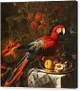 Gabriello Salci  Fruit Still Life With A Parrot Canvas Print