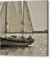 Gaff Rigged Ketch Cutter Sailing The Charleston Harbor Canvas Print