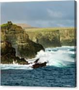 Cliffs At Suarez Point, Espanola Island Of The Galapagos Islands Canvas Print