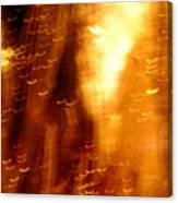 Galaxies 8 Canvas Print