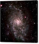 Galaxy In Traiangulum Canvas Print