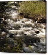 Galena Creek Canvas Print