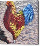 Gamecock Canvas Print