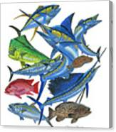 Gamefish Collage Canvas Print