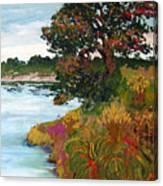 Ganges Tree Canvas Print