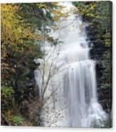 Ganoga Falls Canvas Print