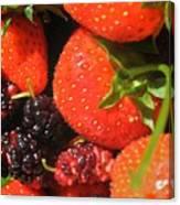 Garden Berries Canvas Print
