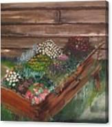 Garden Box Canvas Print