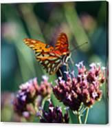 Garden Butterfly Canvas Print