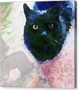 Garden Cat- Art By Linda Woods Canvas Print