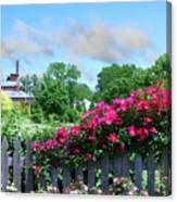 Garden Fence And Roses Canvas Print