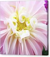 Garden Floral Art Pink Dahlia Flower Baslee Troutman Canvas Print