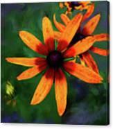 Garden Flower Canvas Print
