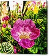 Garden Flower Canvas Print