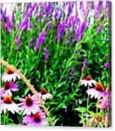Garden Glory Canvas Print