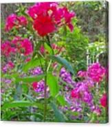 Garden In The Woods Canvas Print