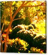 Garden Landscape On A Sunny Day Canvas Print