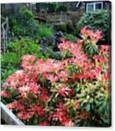Garden Oasis Canvas Print