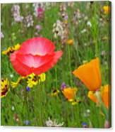 Garden Of Delight Canvas Print