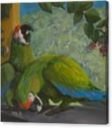 Garden Parrots Canvas Print