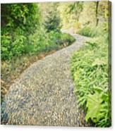 Garden Path - Photography Canvas Print
