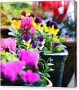 Garden Plants Canvas Print