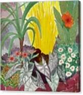 Garden Scene Sep.2010 Canvas Print