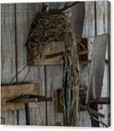 Garden Shed Visitor Canvas Print