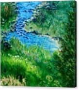 Garden Stream Canvas Print