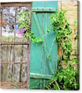 Garden Window Canvas Print