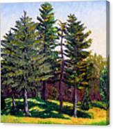 Garfield Trees Canvas Print
