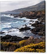 Garrapata Beach In Big Sur Canvas Print