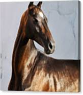 Garsakh Canvas Print