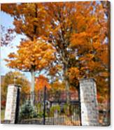 Gate And Driveway 3 Canvas Print