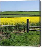 Gateway To Golden Fields Canvas Print