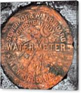 New Orleans Water Meter Cover 9 Months After Katrina Canvas Print