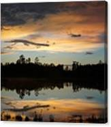 Gator In The Sky Canvas Print
