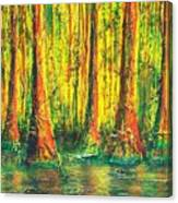 Gator Swamp Canvas Print