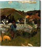 Gauguin: Swineherd, 1888 Canvas Print