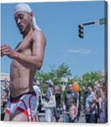 Gay Pride Canvas Print
